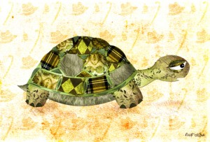turtle_72res_small
